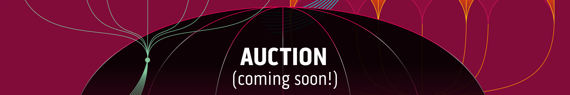 Auction (coming soon!)