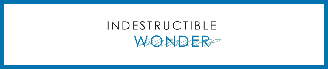 Take a deeper look at Indestructible Wonder